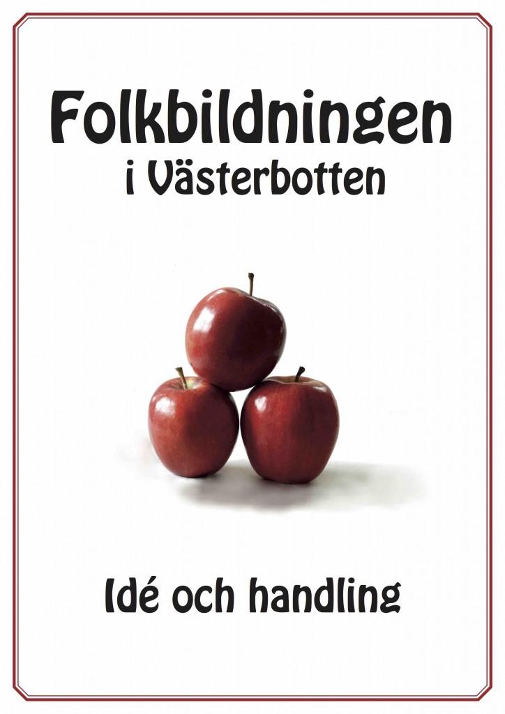 Folkbildningen i Västerbotten - Idé och handling